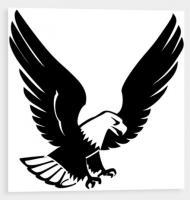 Samolepící silueta dravého ptáka