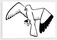 Samolepící silueta dravého ptáka na sklo