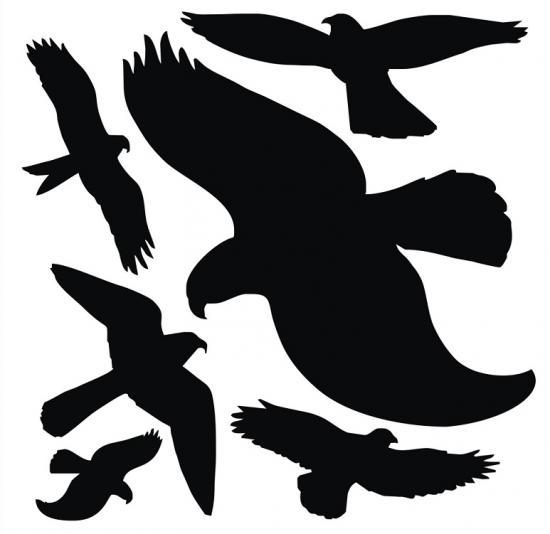 Siluety ptáků - arch 6 ks